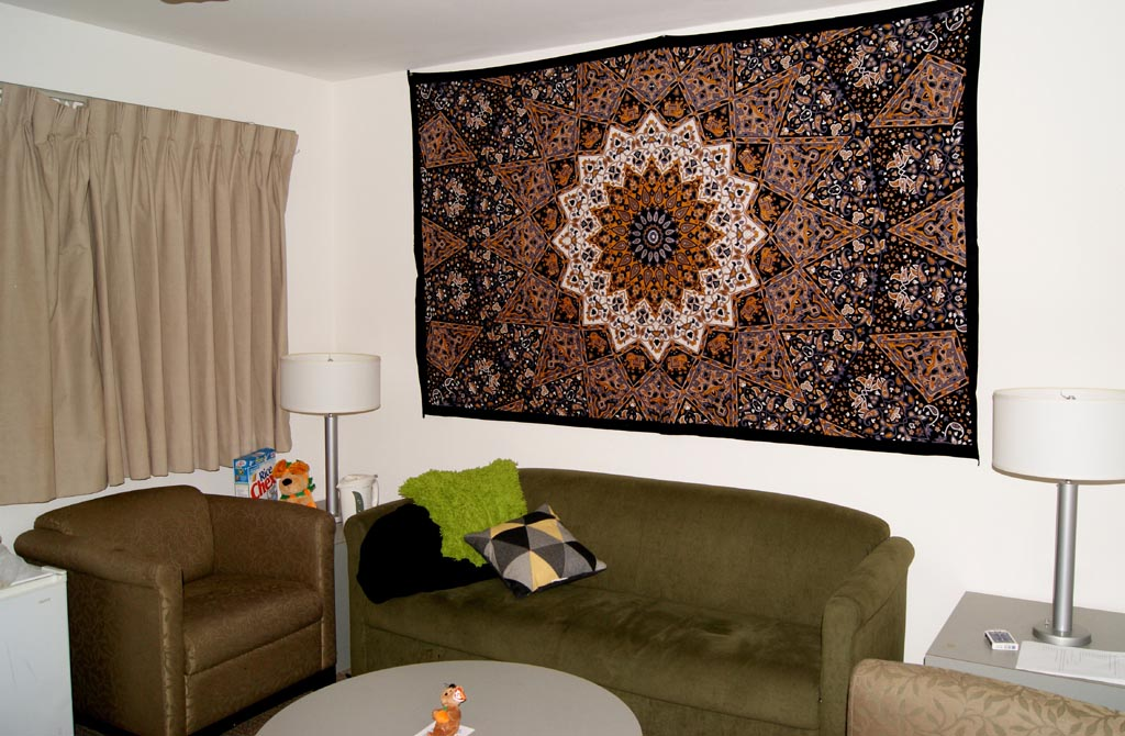 Cool Tapestries for Dorm Rooms