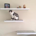 DIY Floating Wall Shelves