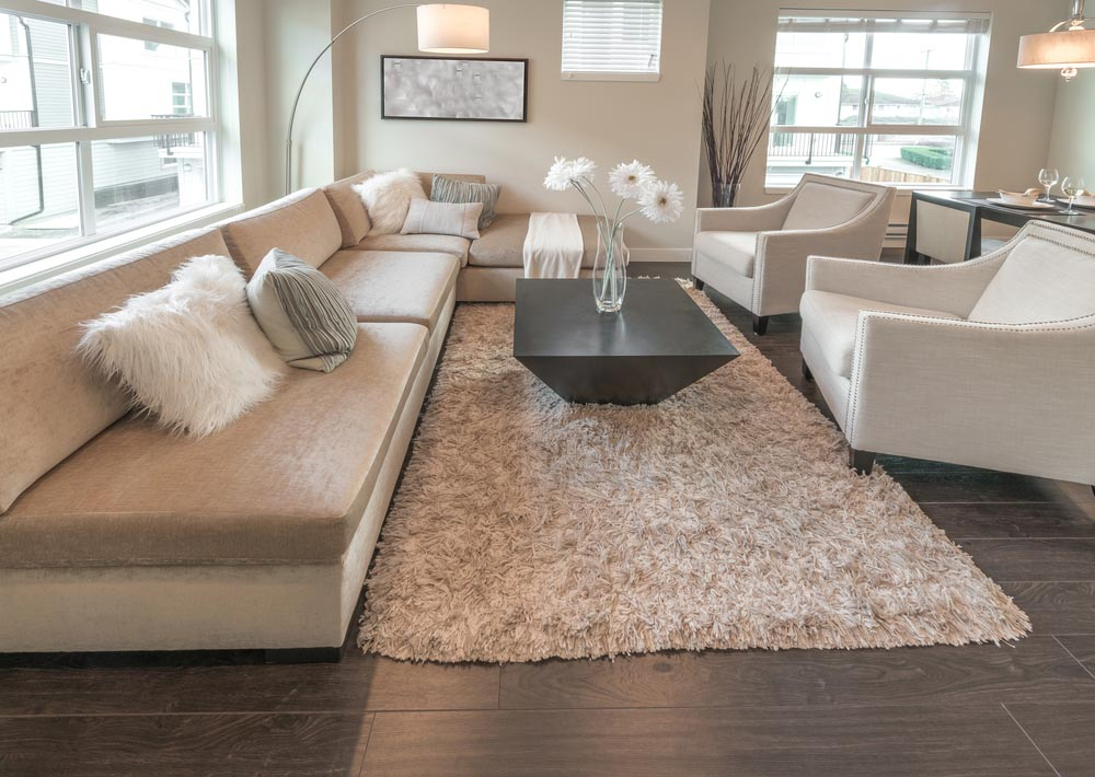 Fluffy White Area Rug Best Decor Things