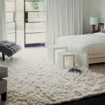 Gray and White Shag Rug