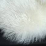 Small White Furry Rug