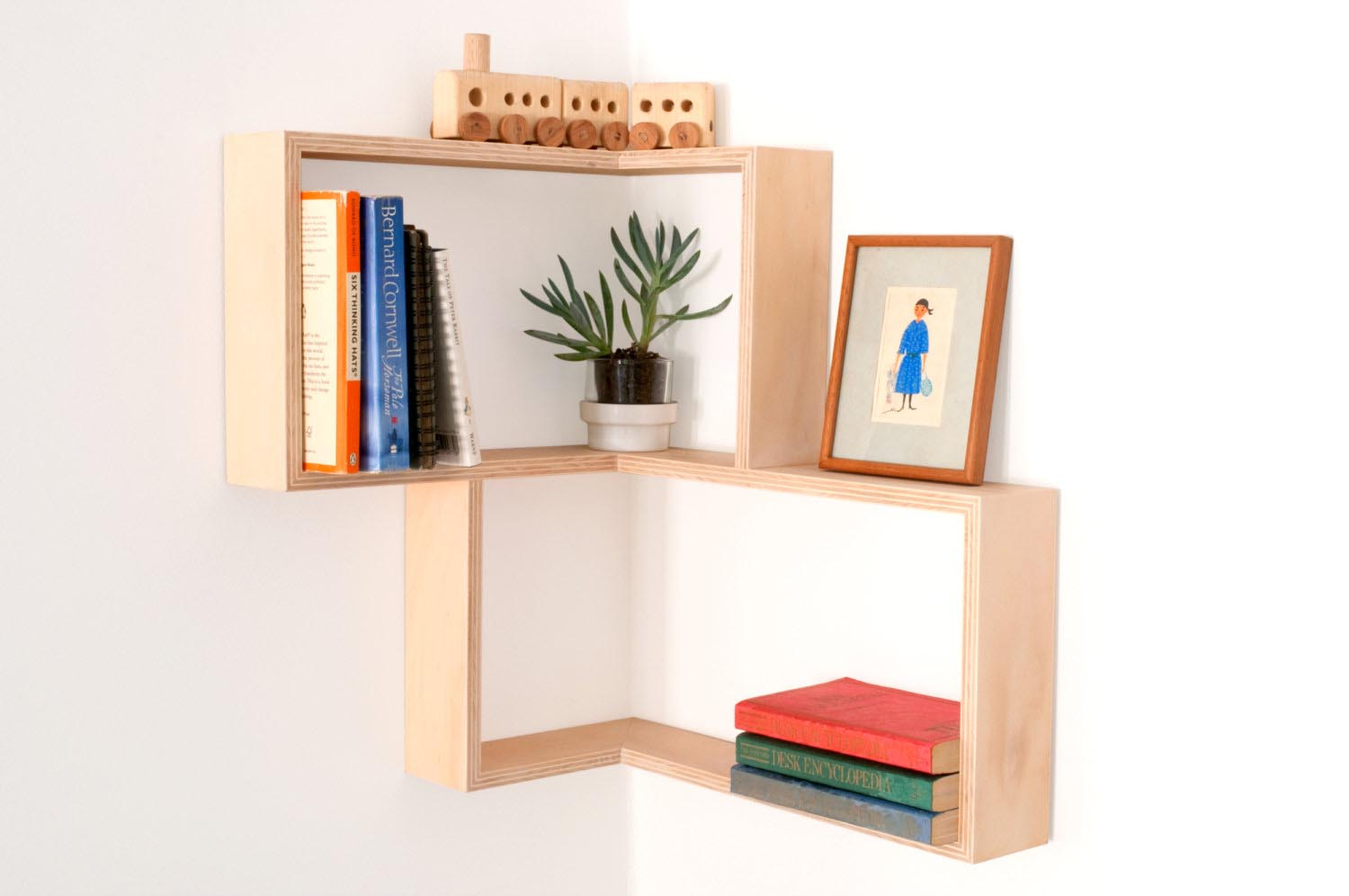 Wall Hanging Display Shelves
