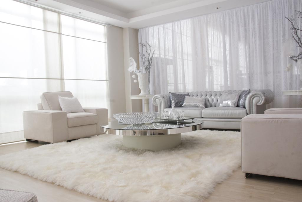 ... Picture White Shag Rug
