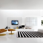 Black and White Striped Carpet