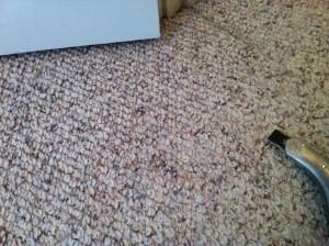 Nylon Berber Carpet Colors