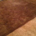 Beige Carpet Dye