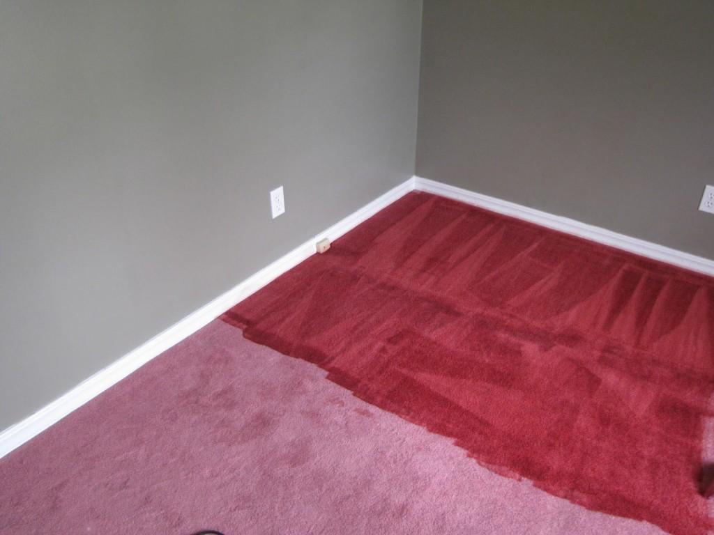Tan Carpet Dye