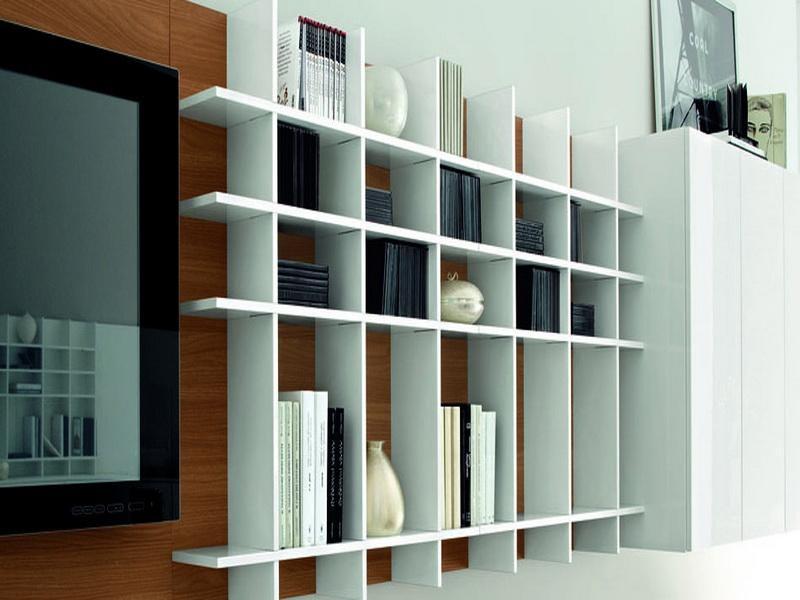 Wall Mounted Book Shelves