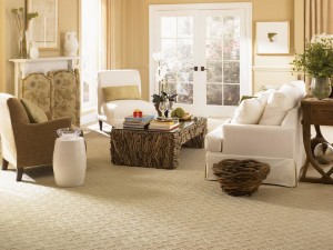 What is Best Berber Carpet